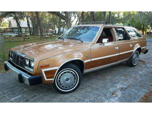 1983 AMC Concord for sale in Old Town, FL