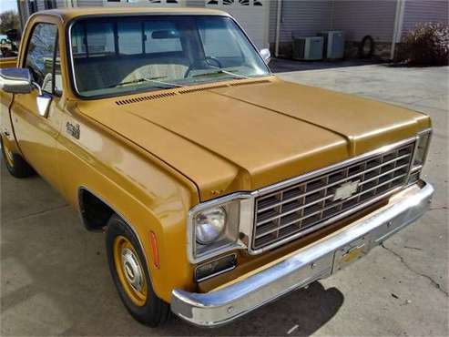 1976 Chevrolet C10 for sale in Cadillac, MI