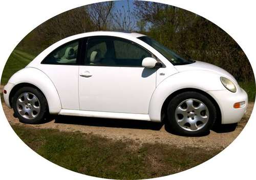 Volkswagen Beetle 2002 *Great Condition* for sale in South Haven, MI