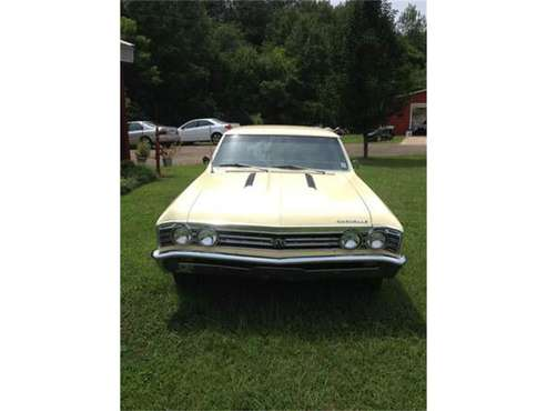 1967 Chevrolet Chevelle for sale in Cadillac, MI