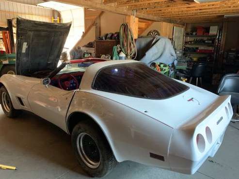 1981 Chevy Corvette for sale in Genoa, NV