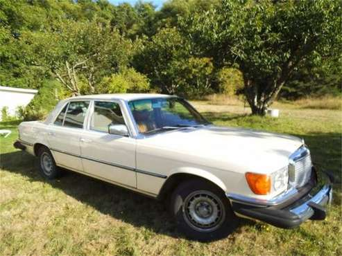 1979 Mercedes-Benz 300 for sale in Cadillac, MI