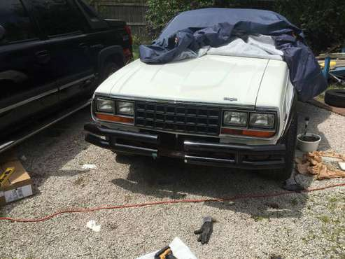 AMC 1981 2 door Eagle Hatchback for sale in Madison , OH