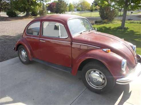 1969 Volkswagen Beetle for sale in Cadillac, MI