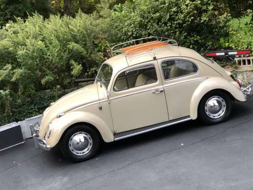 1963 BEETLE FIAT PORSCHE CL500 CLASSIC CARS-BIKE COLLECTION-BEST OFFER for sale in Nesconset, NY