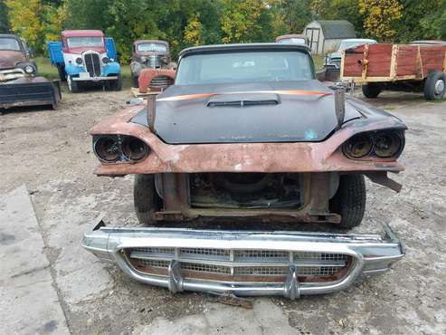 1960 Ford Thunderbird for sale in Thief River Falls, MN