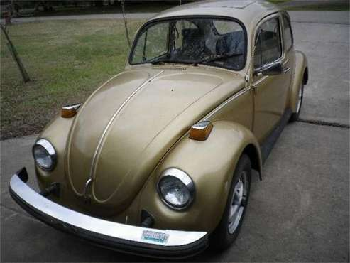 1974 Volkswagen Beetle for sale in Cadillac, MI