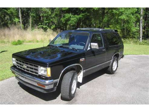 1987 Chevrolet Blazer for sale in Cadillac, MI