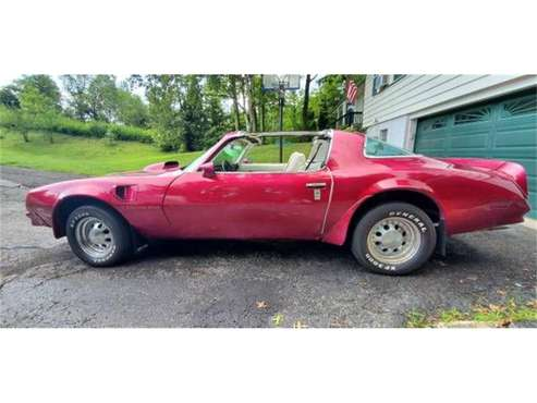 1976 Pontiac Firebird for sale in Cadillac, MI