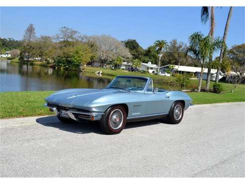 1967 Chevrolet Corvette for sale in Clearwater, FL