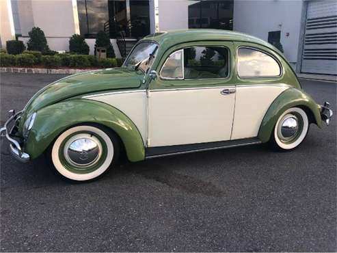 1954 Volkswagen Beetle for sale in Cadillac, MI