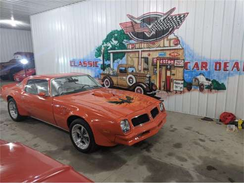 1976 Pontiac Firebird Trans Am for sale in Cadillac, MI