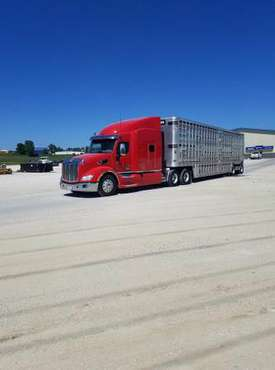 2015 579 Peterbilt for sale in Carroll, IA