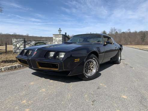 1980 Pontiac Firebird Trans Am for sale in Pen Argyl, PA