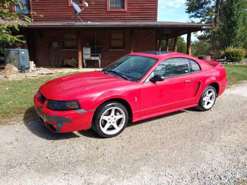 1999 Cobra Mustang for sale in Guilford, OH