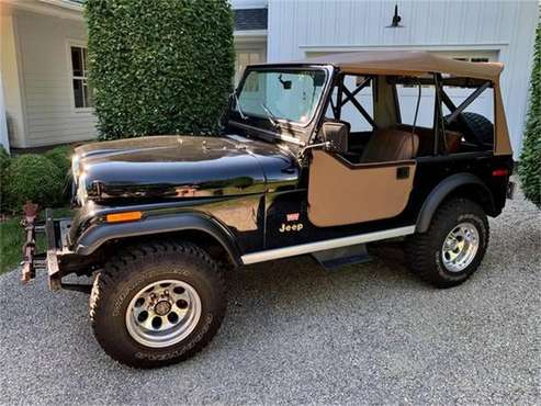 1976 Jeep CJ7 for sale in Cadillac, MI