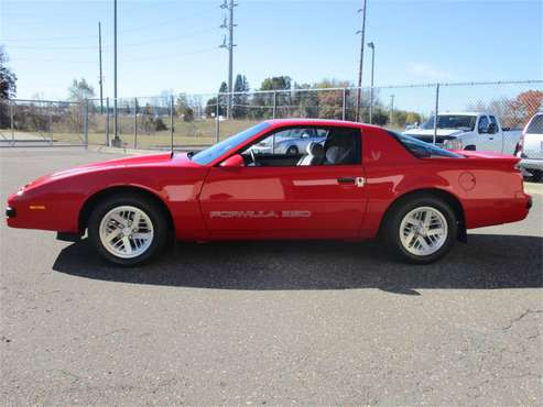 1990 Pontiac Firebird for sale in Ham Lake, MN