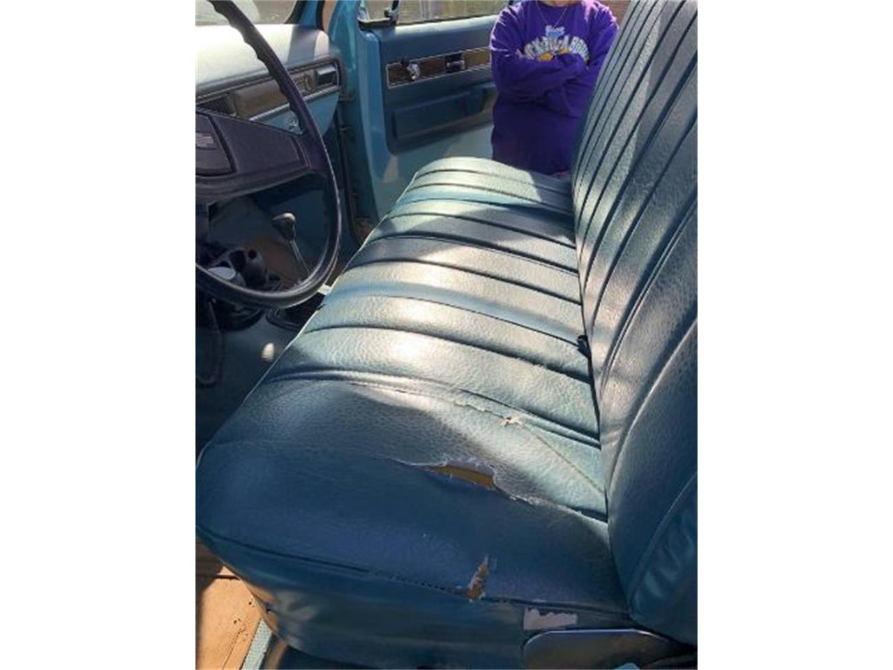 1975 Chevrolet Pickup for sale in Cadillac, MI – photo 10