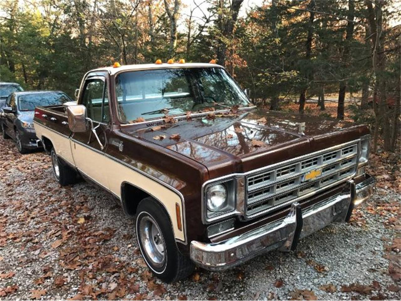 1978 Chevrolet Silverado for sale in Cadillac, MI