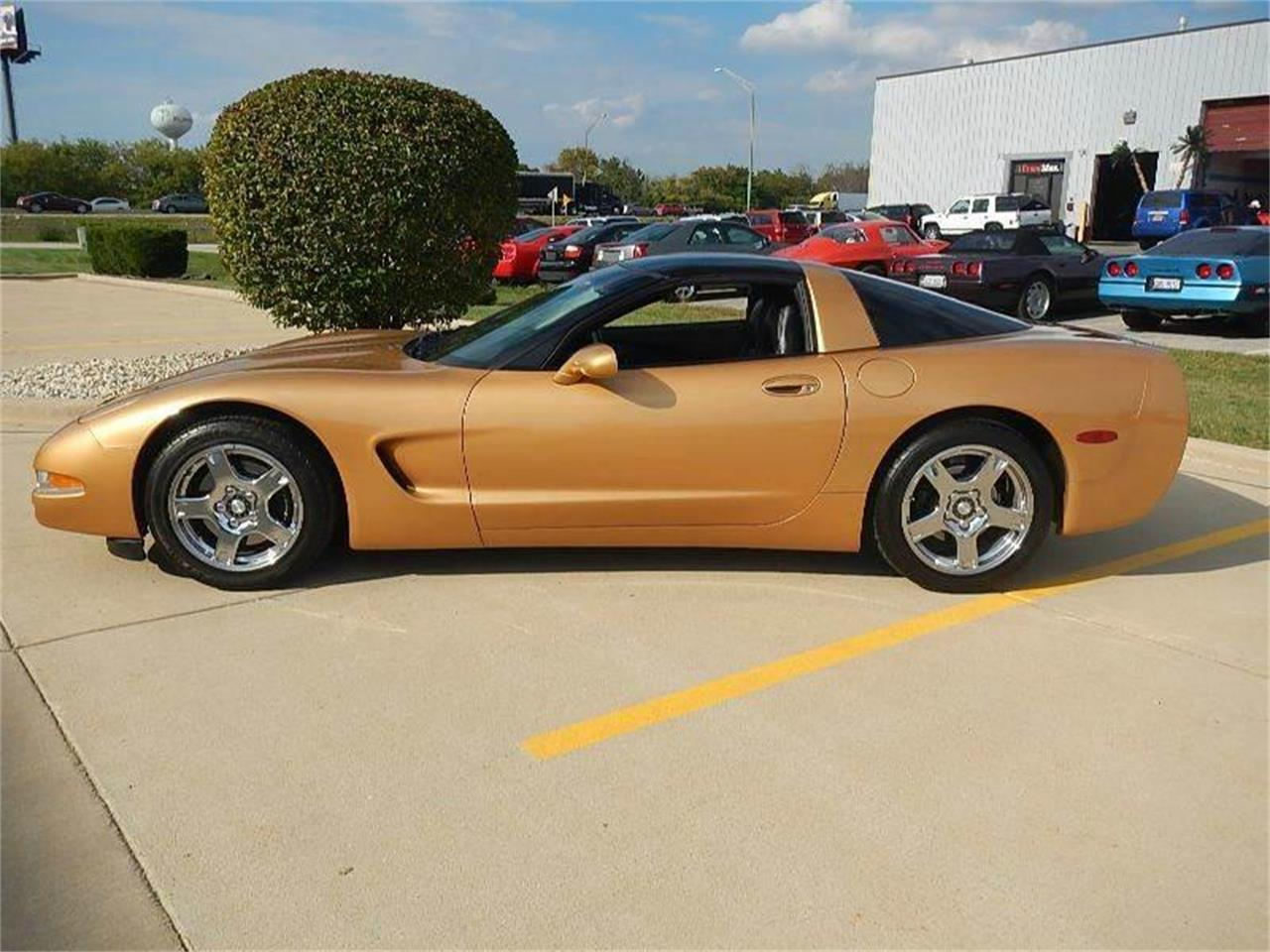 1998 Chevrolet Corvette for sale in Burr Ridge, IL – photo 2
