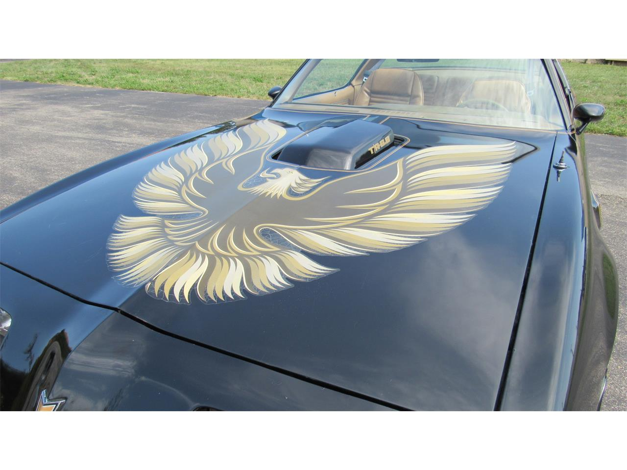 1979 Pontiac Firebird Trans Am for sale in Milford, OH – photo 27