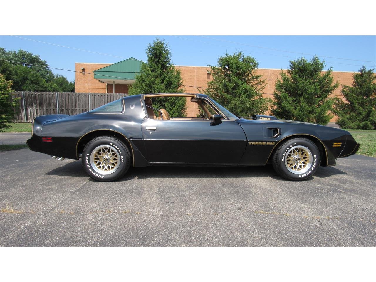 1979 Pontiac Firebird Trans Am for sale in Milford, OH