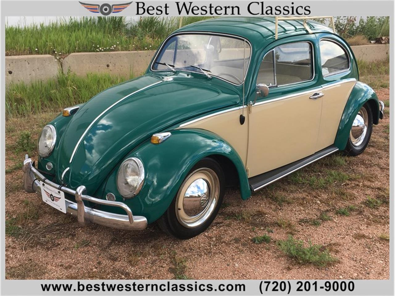 1964 Volkswagen Beetle for sale in Franktown, CO
