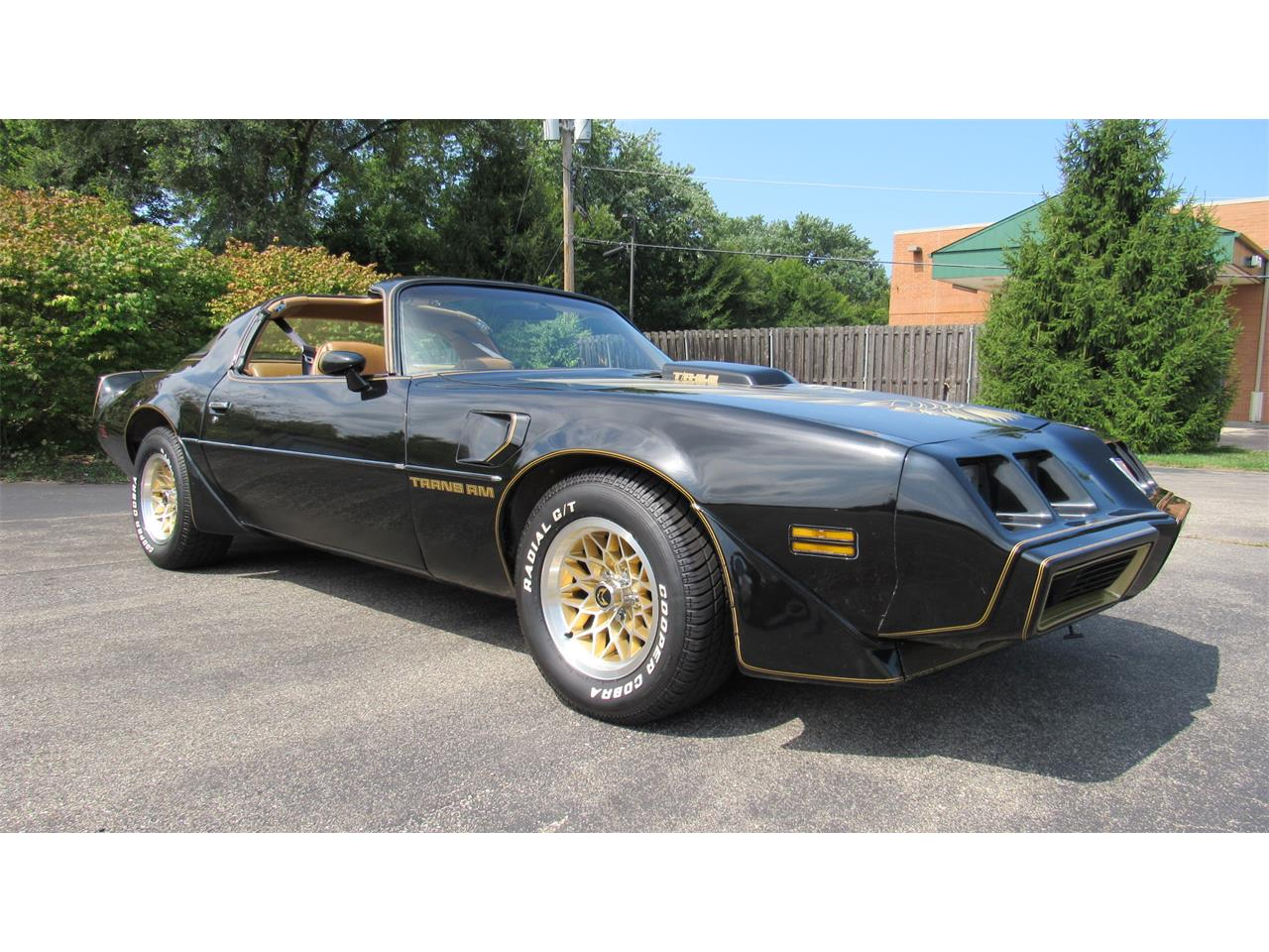1979 Pontiac Firebird Trans Am for sale in Milford, OH – photo 2