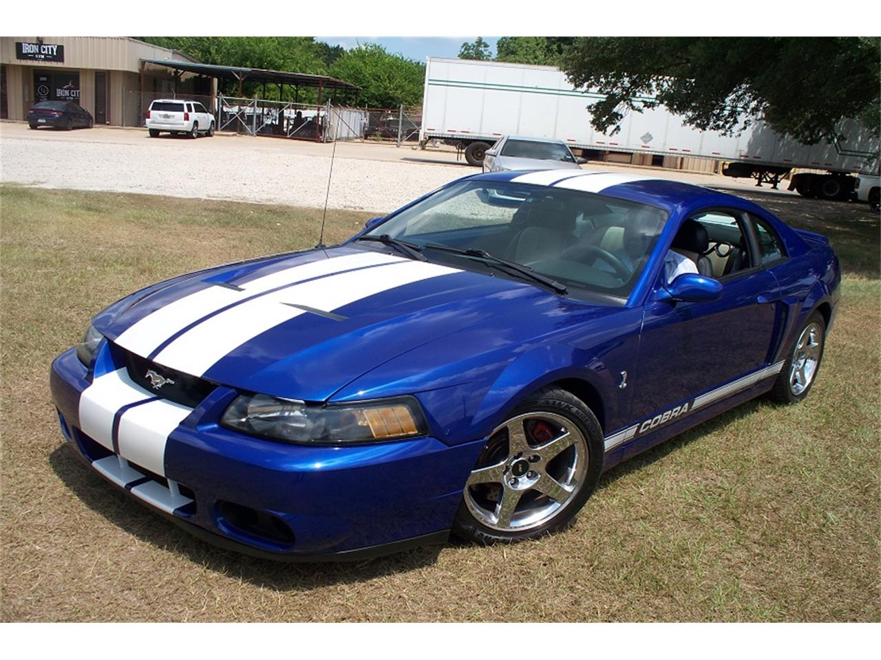 2003 Ford Mustang Cobra for sale in Cypress, TX