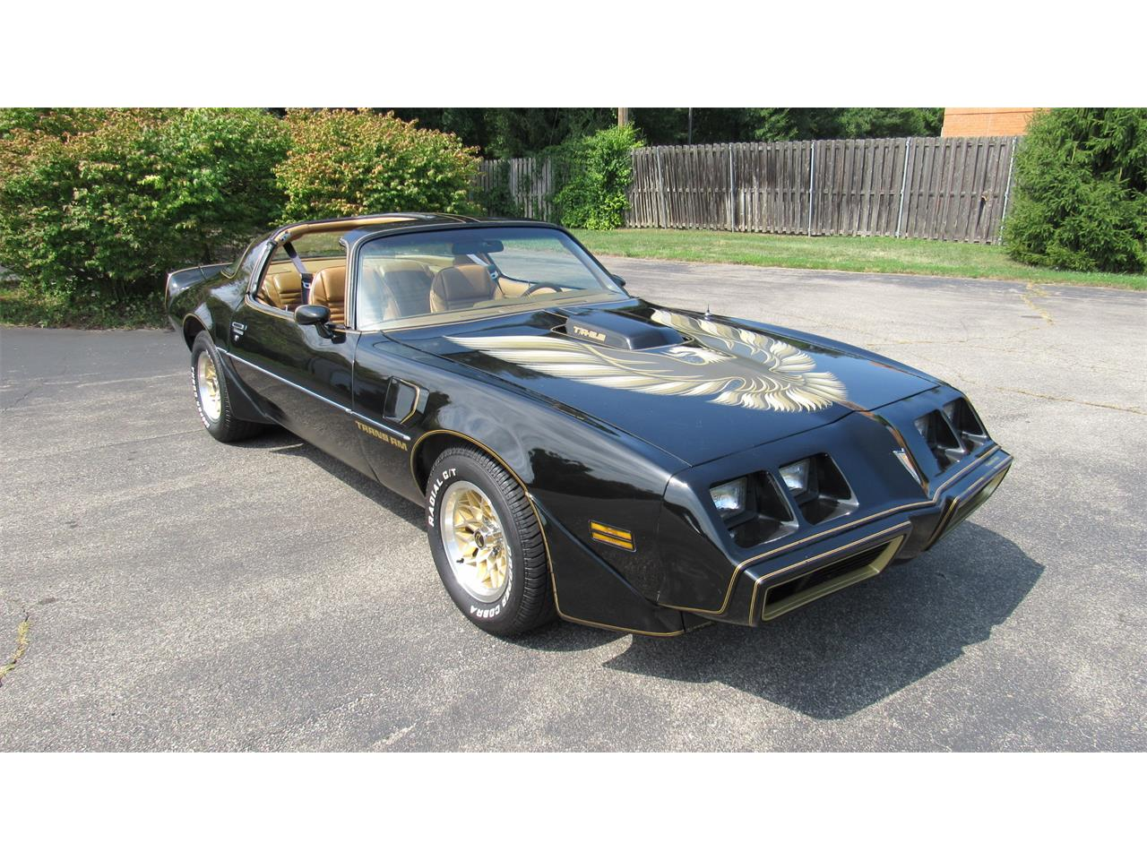 1979 Pontiac Firebird Trans Am for sale in Milford, OH – photo 3