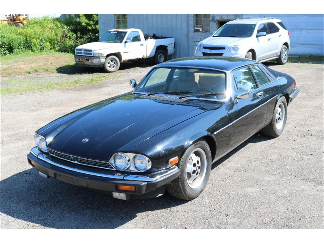 1983 Jaguar XJS for sale in Livonia, MI / classiccarsbay.com