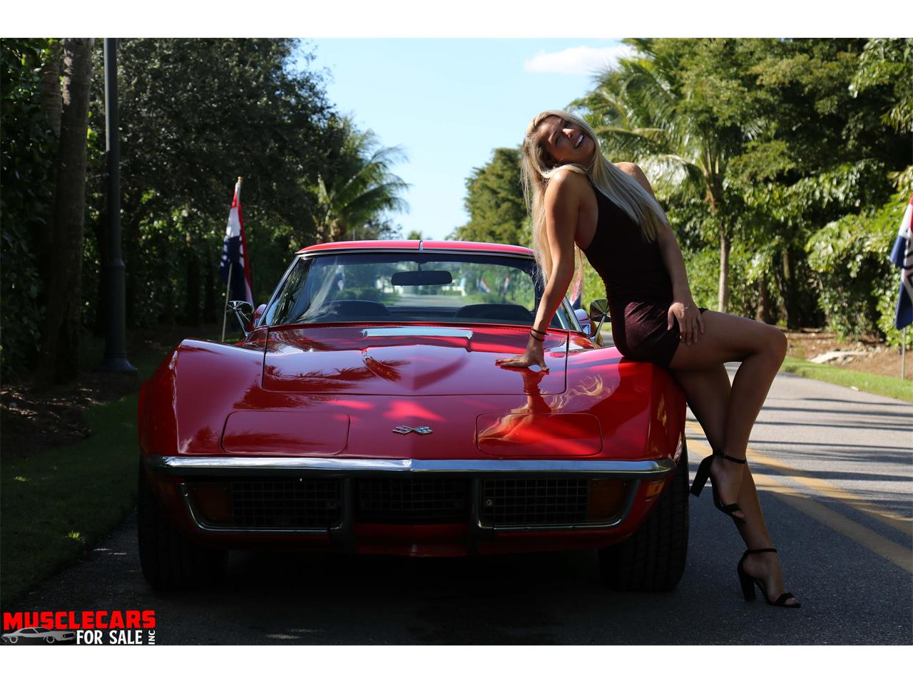 1972 Chevrolet Corvette for sale in Fort Myers, FL – photo 11
