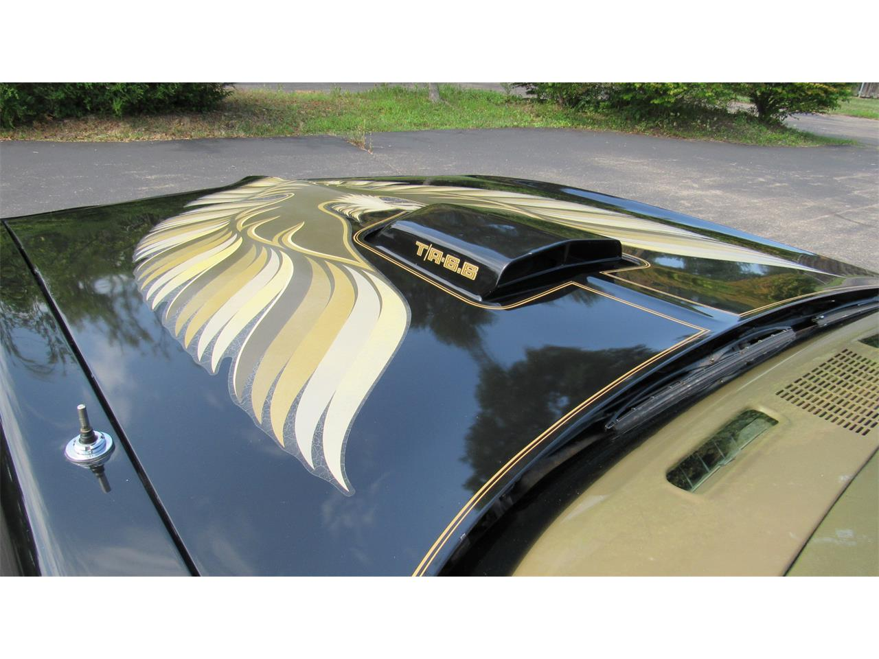 1979 Pontiac Firebird Trans Am for sale in Milford, OH – photo 28