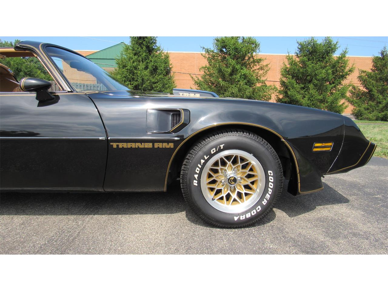 1979 Pontiac Firebird Trans Am for sale in Milford, OH – photo 13